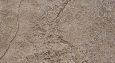 stamped concrete random stone pattern