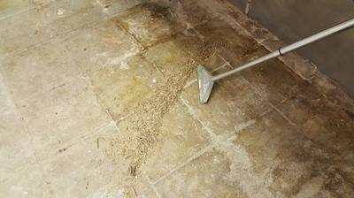 What the concrete floor looked like before polishing